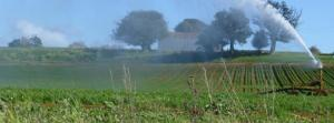 Franklin irrigation pic