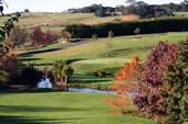 Maxwells Golf