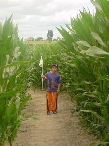 Amazing Maze n Maize