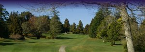 Puke golf pic