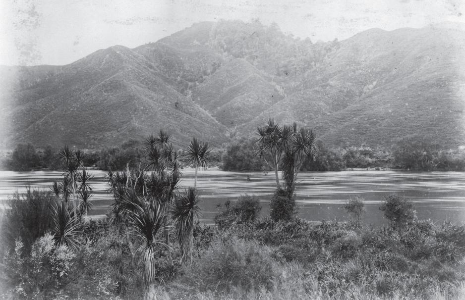 waikato-river-near-taupiri-c-1880-photographed-by-burton-brothers-alexander-turnbull-library