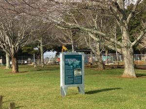 Bledisloe Park work July 2015